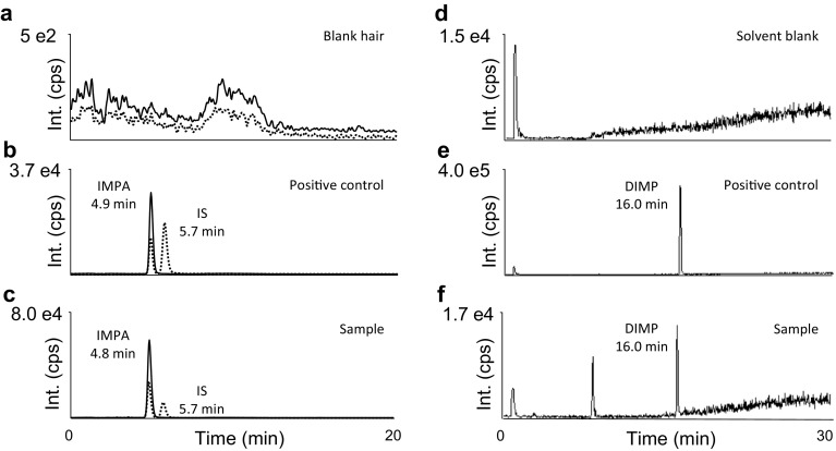 Analysis of a hair sample proving exposure to the nerve agent sarin. a – c Detection of hydrolyzed sarin (IMPA) by LC–ESI(−)-MS/MS MRM (procedure I) in a positive control ( b ) and the sample ( c ). For reasons of clarity, only two transitions for monitoring deprotonated IMPA (from m/z 136.9 to 94.6, solid line ) and the IS (nBPA) (from m/z 137.1 to 79.1, dotted line ) are depicted. d – f Detection of DIMP, a by-product of sarin synthesis, by LC–ESI(+)-HR-MS ( m/z 97.005) is illustrated for a blank ( d ), positive control ( e ) and sample ( f ). Blank hair ( a ) and solvent blank ( d ) were free of interferences