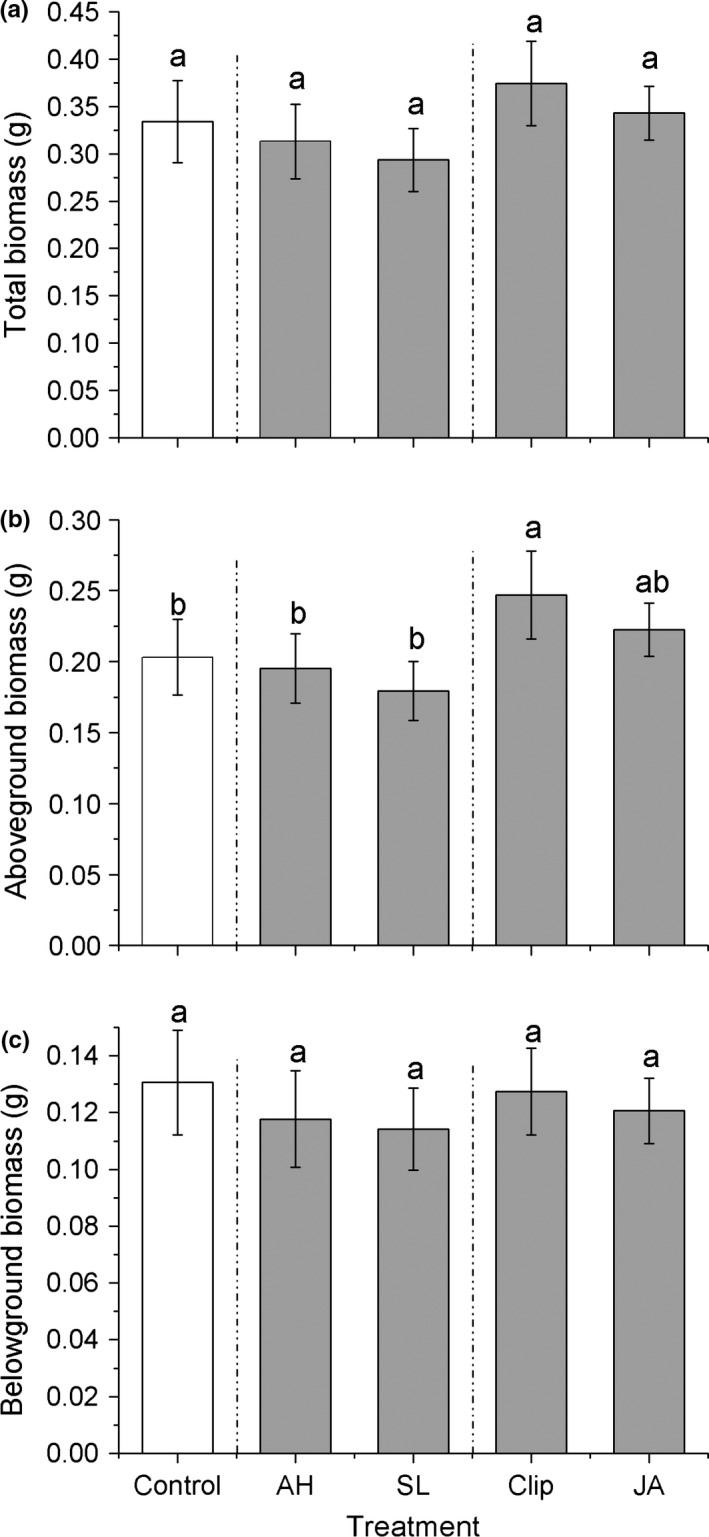 Effects of the induction treatments on plant fitness traits, (a) total plant biomass, (b) aboveground biomass, (c) belowground biomass among Alternanthera philoxeroides plants. AH , Agasicles hygrophila damage, SL, Spodoptera litura damage, Clip, clipped leaves, JA, exogenous <t>jasmonic</t> acid application. Data are means ± 1 SE , and different letters indicate significant differences among means following LSD‐adjusted post hoc contrasts