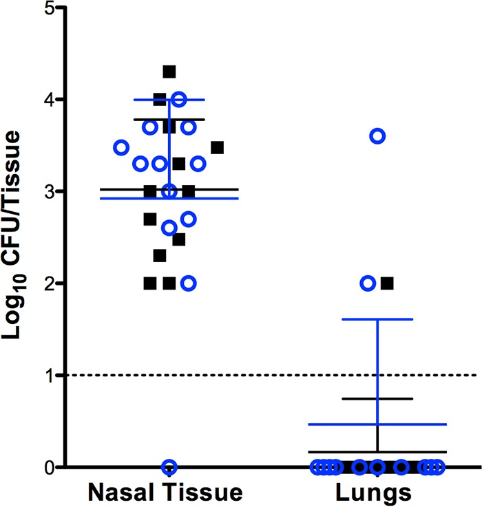 Dual-species colonization of the murine nasal mucosa. Samples were harvested 48 h after colonization; each point presents the CFU recovered from individual mice ( n = 12). Blue circles represent S. pneumoniae EF3030, and the black squares represent S. aureus UAMS-1. The dashed line indicates the limit of detection. Bars indicate standard deviations.