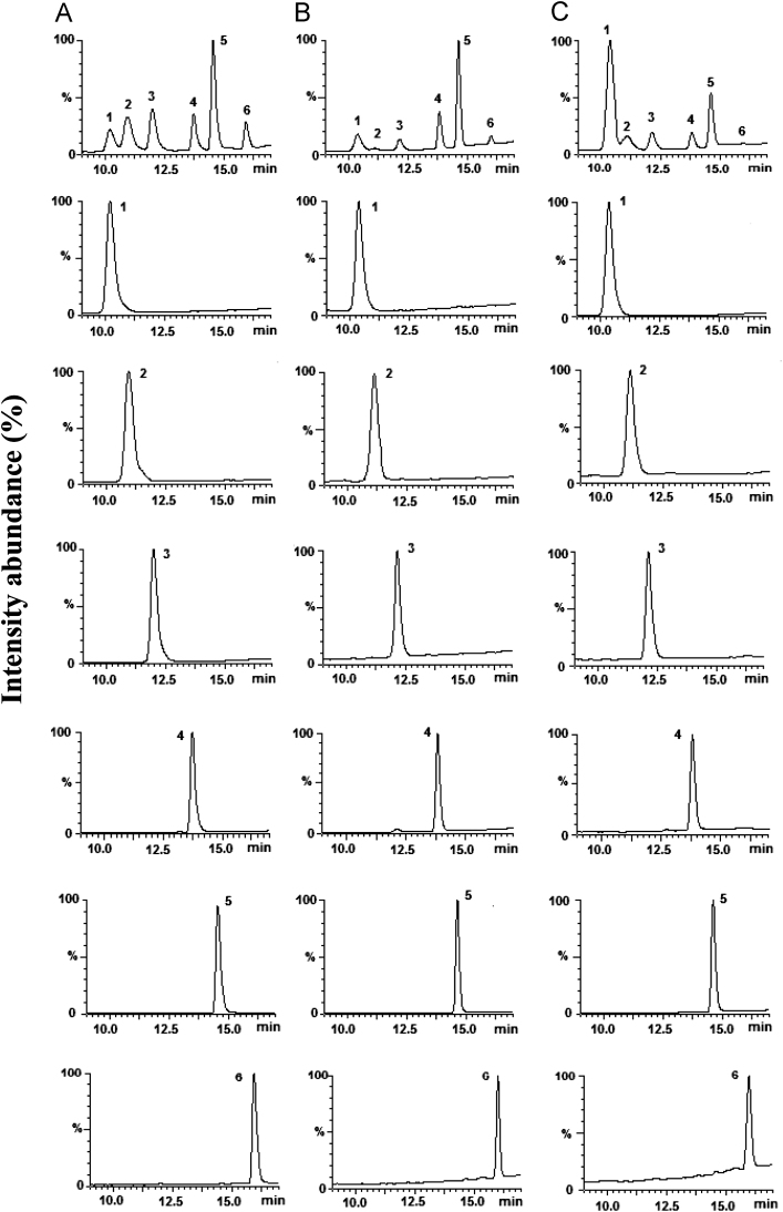 Total ion chromatograms (TIC) obtained from standard polyamines (A), plasma sample (B) and urine sample (C) by HPLC-ESI-MS. (1) PUT, (2) DAP, (3) CAD, (4) DHA (I.S.), (5) SPD, and (6) SPM.