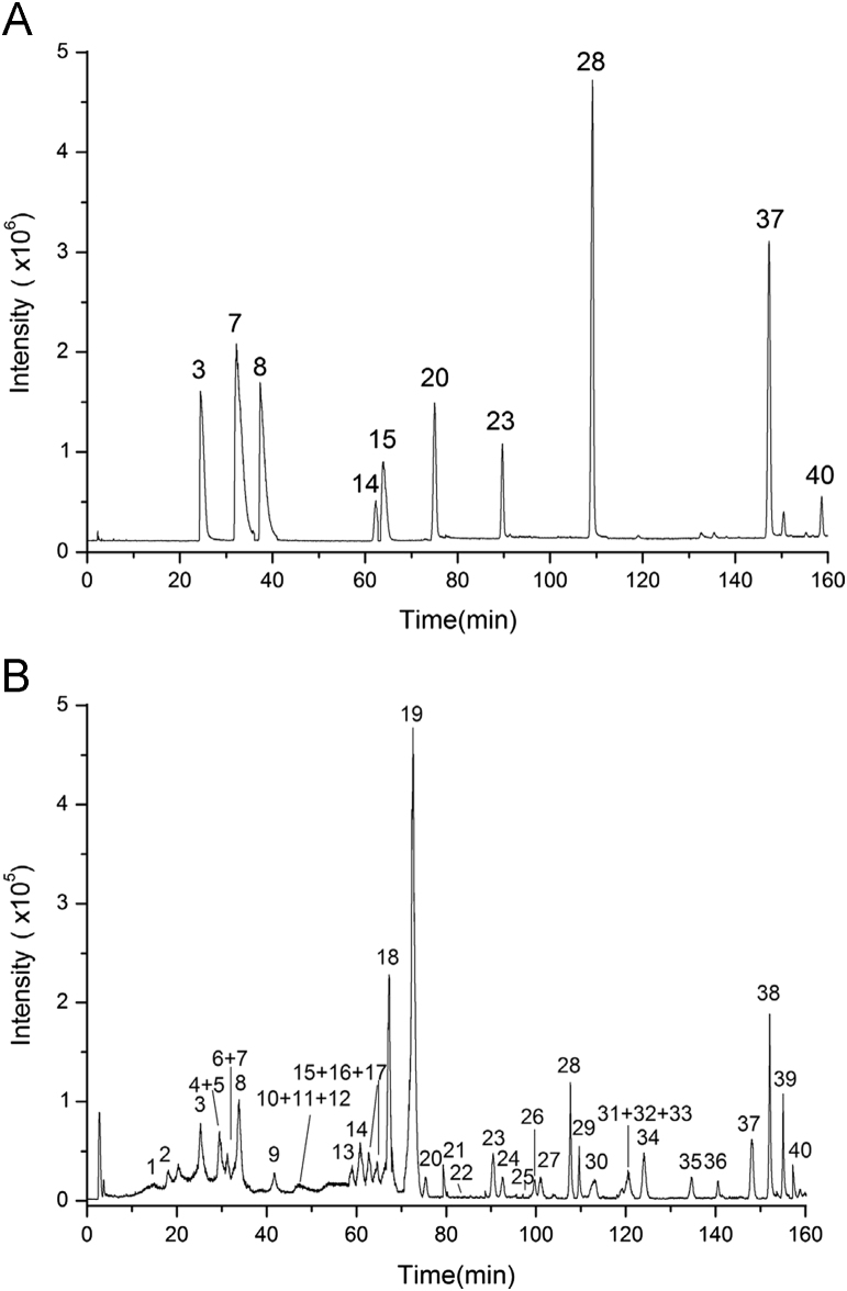 <t>HPLC–ESI-MS</t> total ion chromatogram (TIC) in positive ion mode of (A) the mixed standard and (B) YZT.