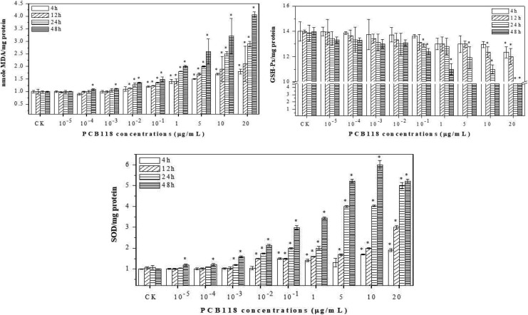 Antioxidant and oxidant enzyme response in human lungs fibroblast (HELF) cells exposed to PCB118.