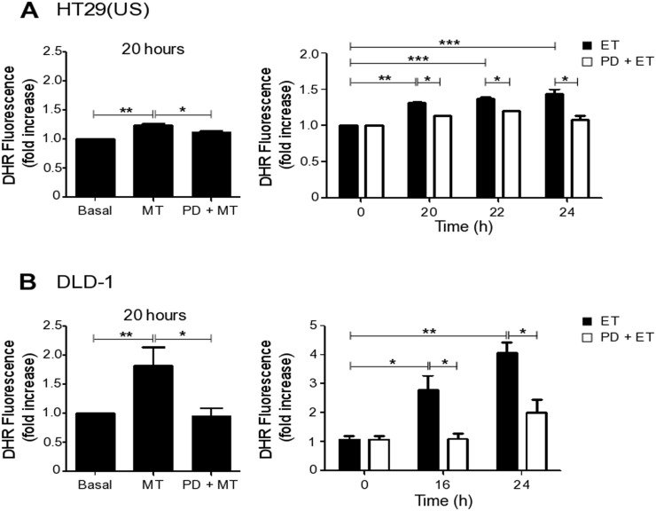 MEK inhibition reduces ROS production induced by Methotrexate and Etoposide (A) HT29(US) or (B) DLD-1 colon cancer cells (3 x 10 6 ) were seeded in 24-well plates and, after 24 h, were treated with the MEK inhibitor PD98059 (PD, 50 μM) for 30 min, added prior to treatment with 100 nM Methotrexate for 20 h or 10 μM Etoposide for the indicated time periods. Cells were washed 3 times with PBS and subsequently incubated with trypsin for 5 min. Once in suspension, cells were loaded with the probe DHR123 (1.4 μg/ml) in RPMI media without serum for 30 min and then the reaction was stopped on ice. The extent of DHR123 oxidation was determined by flow cytometry. The graphs show DHR123 fluorescence normalized to the untreated condition (Basal) (mean ± SEM) averaged from 3 independent experiments. Significant differences are indicated *** p ≤ 0.001, ** p ≤ 0.01, * p ≤ 0.05.