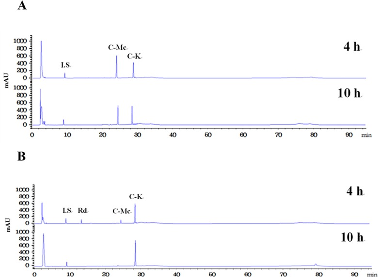 HPLC profiles of the reaction solutions obtained after 4 h and 10 h for the production of C-K from ginsenoside Rc by (A) the wild-type and (B) L213A variant β - glycosidases from S . solfataricus .