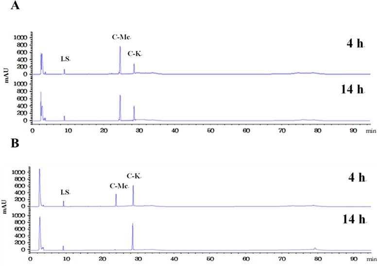 HPLC profiles of the reaction solutions obtained after 14 h for the production of C-K from ginsenoside Mc by (A) the wild-type and (B) L213A variant enzymes from S . solfataricus .