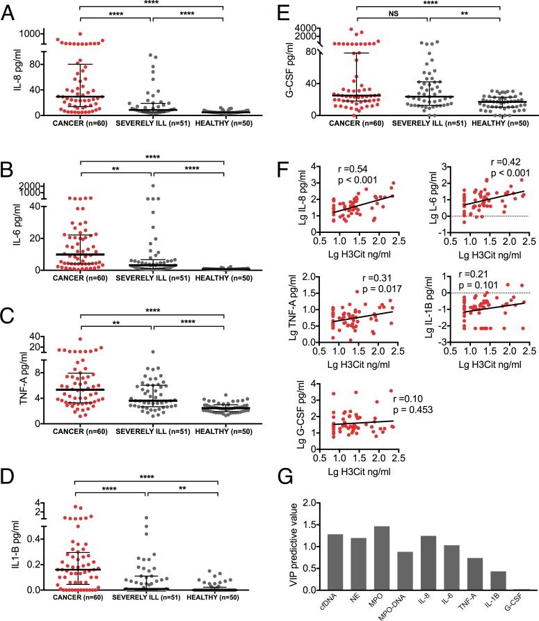 Inflammatory cytokines are elevated and correlate with H3Cit in patients with advanced cancer. ( A-E ) Plasma levels of IL-8, IL-6, TNFα, IL-1β, and G-CSF were all significantly higher in cancer patients compared to healthy individuals, as well as to severely ill patients without known cancer, with the exception of G-CSF which was similarly elevated in cancer patients and severely ill patients without known cancer. (F) Plasma levels of H3Cit correlated to plasma levels of IL-8 and IL-6, but weaker or no correlations were found to TNFα, IL-1β and G-CSF. ( G ) Multivariable regression confirmed the predictive influence of plasma cfDNA, NE, MPO, MPO-DNA complexes, IL-8, and IL-6 on plasma H3Cit levels (p