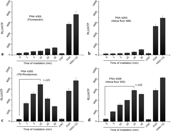 Cellular antisense activity in HeLa pLuc705 cells of PNAs 4305, 4263, 4265, 4306, 2787 and 2534. After transfection of the cells with 3 µM PNA, irradiation of cells was carried out with the excitation wavelength specific for each fluorophore for 1, 5, 10, 20, 25 and 30 min. Cells were incubated further for 24 h after irradiation. All the samples were subjected to the luciferase analysis. Luciferase activities were analysed by <t>Bright-Glo</t> reagent (Promega) and are expressed as relative light units (RLU/well) normalized by the <t>ATP.</t> Each data set represents the mean ± SD of triplicate experiment. CQ: chloroquine. TM-Rhodamine: Tetramethylrhodamine.