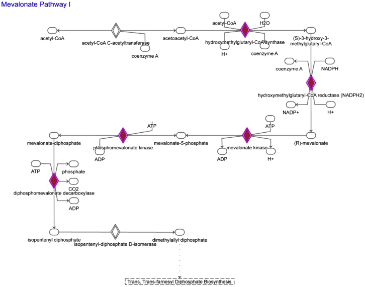 Mevalonate Pathway, Related to Figure 5 Schematic depiction of the mevalonate pathway with genes significantly upregulated in LT-HSC from β-glucan–injected mice (as compared to PBS-treated mice) shown in red.