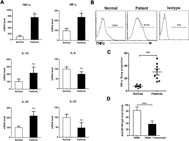 Modified function of Bregs were due to the expression of TNF-α. ( A ) Levels of TNF-α, IFN-γ, IL-10, IL-4, IL-22 and IL-23 mRNA in CD19 + CD24 hi CD27 + Bregs after sorting from PBMCs of 5 patients and 4 healthy controls. ( B) Representative FACS data of the frequency of TNF-α + cells within gated CD19 + CD24 hi CD27 + Bregs from PBMCs of BP patients and healthy controls. APC/Cy7 Mouse IgG1 were used as a negative control for immunofluorescence staining and flow cytometry assay. ( C ) Statistical analysis of the frequency of TNF-α + cells within gated CD19 + CD24 hi CD27 + Bregs in the indicated groups (n = 8 per groups). ( D ) Anti-BP180 antibody production in patient-derived PBMCs treated with etanercept. *p
