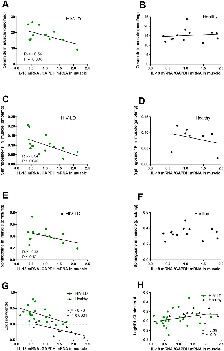 The correlation relationship between muscle IL-18 mRNA and muscle sphingolipid content, circulating triglycerides and HDL-cholesterol in patients with HIV-lipodystrophy (to the right) and in healthy controls (to the left). IL-18 mRNA in muscle is negatively correlated to ceramide (A) and sphingosine-1P (C) content in muscle in patients with HIV-Lipodystrophy, but not in healthy controls (B, D, F). Il-18 mRNA in muscle is negatively correlated to triglycerides in patients with HIV-Lipodystrophy and in healthy controls (G), and positively correlated to HDL-Cholesterol in patients with HIV-lipodystrophy. Regressions lines, correlations coefficient and significance levels are given for healthy controls and patients with HIV-Lipodystrophy separately.