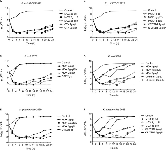 In vitro dynamic time-kill curves using human exposures of moxalactam, cefotaxime, and cefoperazone/sulbactam against Escherichia coli ATCC25922 and CTX-M-producing E. coli and Klebsiella pneumoniae . Notes: ( A ) and ( B ) show simulated dosing regimens against E. coli ATCC25922; ( C ) and ( D ) show simulated dosing regimens against E. coli 3376; ( E ) and ( F ) show simulated dosing regimens against K. pneumoniae 2689. The dotted lines indicate the regimens of MOX. The solid lines indicate the regimens of CTX and CFZ/SBT. The lower limit of detection (broken line) was 1.47 log 10 CFU/mL. Abbreviations: ATCC, American Type Culture Collection; CFU, colony forming units; CFZ/SBT, cefoperazone/sulbactam; CTX, cefotaxime; MOX, moxalactam; qd, once-daily; q12h, twice-daily; q8h, thrice-daily.