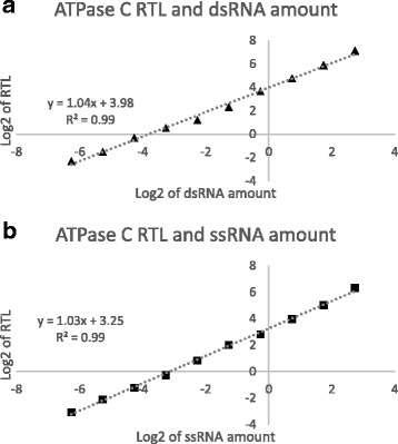 RNase I f -qPCR assay linearity. 10-point standard of synthetic dsRNAs and sRNAs were analyzed using RNase I f -qPCR described in Fig. 1 . The synthetic RNAs were analyzed by 95 °C (RNase I f ), and 70 °C (without RNase I f ), to quantify dsRNAs ( a ), and ssRNAs ( b ), respectively. The relative transcript level (RTL) was obtained via normalization of target signal over the endogenous gene (TIP41). The correlation between log2 of RTL and RNA amounts are presented here. The equation of trend line and R 2 is shown