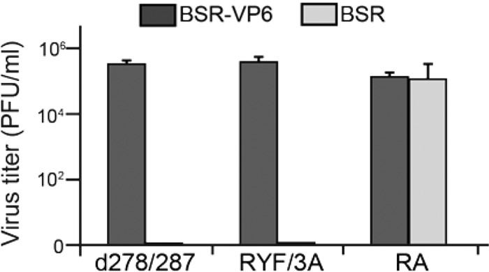 Assay of VP6/VP3 interaction-defective BTV, BTV RYF/3A (RYF/3A), and BTV d278/287 (d278/287) replication. Each 100 μl (∼1 × 10 3 PFU) of VP6/VP3 interaction-defective BTV once amplified in BSR-VP6 cells was inoculated into either WT-BSR cells (light gray) or BSR-VP6 cells (dark gray). At 24 h postinoculation, the total virus titer (mean ± SD) was determined by plaque assay. As a control, cells were infected with BTV RA (RA).