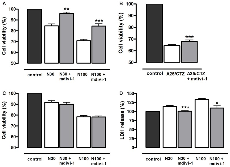 Mdivi-1 protects neurons from excitotoxicity. (A,B) Neurons were stimulated with (A) NMDA (30 μM and 100 μM, 30 min) or (B) AMPA (25 μM, 30 min) and (CTZ, 100 μM) in the presence or absence of mdivi-1 (50 μM, 1 h) and 24 h later cell viability was assessed by the quantification of vital dye calcein-AM fluorescence ( n = 6 and n = 8, respectively). (C) Neurons were exposed to mdivi-1 (50 μM) after being stimulated with 30 and 100 μM of NMDA for 30 min, and 24 h later cell viability was assessed by the analysis of calcein-acetoxymethyl (AM) fluorescence ( n = 3). (D) Neurons were stimulated with 30 μM and 100 μM of NMDA for 30 min in the presence or absence of mdivi-1 (50 μM, 1 h) and 1 h later LDH release to the extracellular medium was quantified ( n = 4). Data represent means ± SEM of normalized calcein fluorescence values. * p