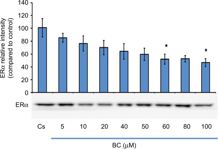 Concentration-dependent effects of BC on ERα levels. Notes: T-47D cells were cultured in <t>RPMI-1640</t> medium supplemented with 10% FBS for 2 days followed by 6 days in media containing 5% DCC-stripped FBS with media changed every 48 hours. On the seventh day, cells were treated with BC for 24 hours at concentrations of 5–100 µM. Cellular protein extracts were prepared followed by protein quantification, SDS-PAGE, and Western blot analysis. The control lane, Cs, represents cells grown in the absence of ligands in media containing 5% DCC-stripped FBS. The relative intensity of ERα protein, as compared to Cs, is displayed as the mean ± SEM. The asterisk indicates significant difference with respect to the control. * p