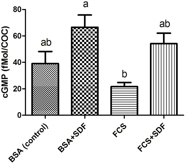 cGMP levels in bovine COCs matured in vitro for 24 h in in the presence or not of the PDE5 inhibitor (10 −5 M SDF) in TCM199 supplemented with 0.4% <t>BSA</t> or 10% <t>FCS.</t> The control group consists of COCs matured with 0.4% BSA without addition of FCS or SDF. Data are the mean ± SEM of four replicates. Different letters indicate significant differences (p
