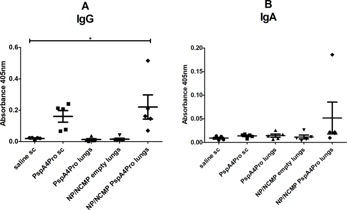 Induction of anti-PspA4Pro antibodies in BALF by mucosal immunization targeting the lungs. The induction of anti-PspA4Pro IgG (A) and IgA (B) antibodies in BALF from mice inoculated with the indicated formulations was determined by ELISA. Mice were inoculated with 2 doses of the formulations. Control mice were inoculated sc with saline or PspA4Pro. A 405 nm of samples diluted 1:2 is shown. * indicates statistically significant difference with saline (One-way ANOVA, Tukey's Multicomparison Test). Symbols represent each individual. Means±standard errors are shown.