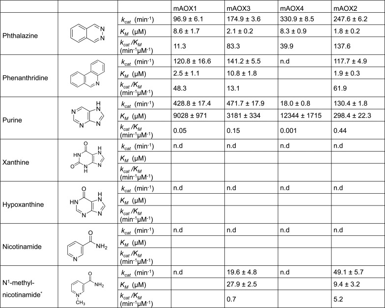 Steady-state kinetic parameters for mAOX1-4 with N-heterocyclic compounds as substrates. Apparent steady-state kinetic parameters were recorded in 50 mM Tris-HCl, 200 mM NaCl, and 1 mM EDTA (pH 8.0) in the presence of 100 μM DCPIP as electron acceptor. The substrate concentrations were varied around 0.5 and 10 times the K M . The chemical structure of each substrate is shown in the Fig. The values were corrected to a molybdenum saturation of 100% for each mAOX variant for a better comparability. Kinetic Data are mean values from three independent measurements (±S.D.). n.d. = no activity detectable.