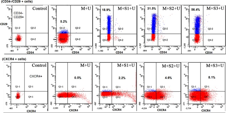Flow <t>cytometry</t> analyses of BMSCs concentrations in peripheral blood CD34−/CD29 + and CXCR4 + are surface markers of BMSC and the graphs show the concentration of BMSCs in peripheral blood. CD29 was labeled with PE/Cy5, CD34 with PE and CXCR4 with Alexa Fluor ® 488. Specific values of CD34−/CD29 + cells and CXCR4 + cells were marked in the corresponding position of the squares. The concentration of BMSCs in peripheral blood significantly increased after transfection with SDF-1α genes. ( n = 10).