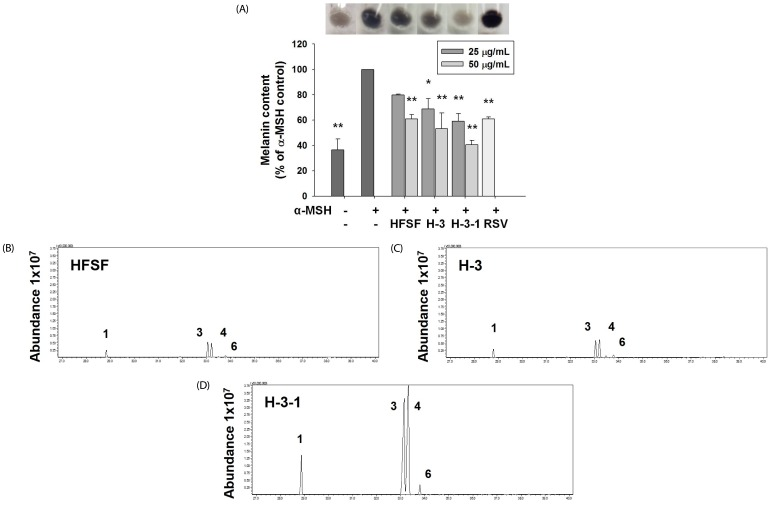 Effects of sub-fractions from the n -hexane fraction of Sageretia thea fruit (HFSF) on anti-melanogenesis in B16F10 cells. (A) Melanin content was examined after treatment with the HFSF, sub-fraction H-3 from the HFSF (H-3), sub-fraction H-3-1 from H-3 (H-3-1), or resveratrol (RSV, 20 µM) in medium containing α-MSH for 48 h. Melanin levels were visualized in the 50 µg/mL treatment concentration. Representative <t>GC-MS</t> chromatogram of HFSF (B), H-3 (C), and H-3-1 (D). Assigned peak numbers correspond to the number of identified compounds in Table 1 . (1) methyl palmitate, (3) methyl linoleate, (4) methyl linolenate, (6) methyl stearate. Data are represented as means ± SD. * P