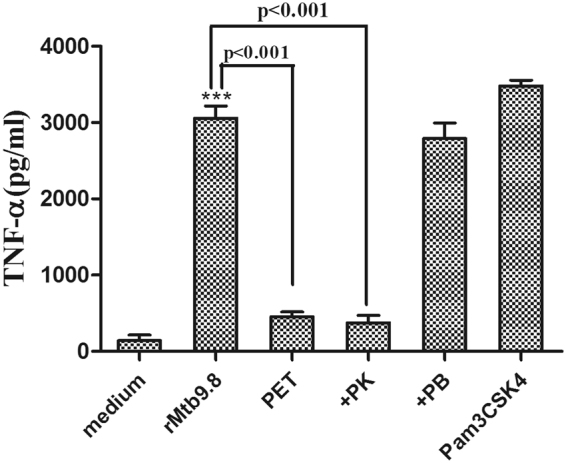 rMtb9.8 induces the secretion of TNF-α by THP-1 cells. THP-1 cells were cultured in the presence of rMtb9.8 (5 µg/ml) for 4 h at 37 °C. The cell culture supernatant was collected, and the level of TNF-α in the supernatant was measured using ELISA. Pam3CSK4 (10 µg/ml), a TLR1/2 agonist, was used as a positive control. The pET30 vector tag protein without the Mtb9.8 gene (PET) was used as a negative control. Proteinase K abrogated rMtb9.8-induced expression of TNF-α (p