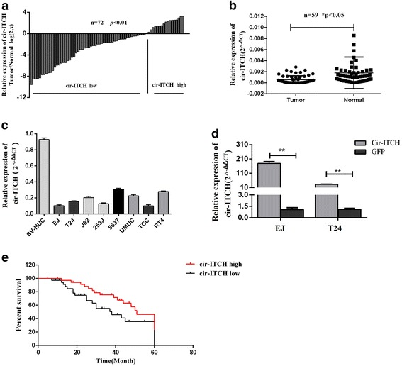 Cir-ITCH was significantly decreased in BCa and correlated with prognosis of BCa patients. a and b Relative expression level of cir-ITCH in BCa tissues (T) and adjacent normal tissues (N) (a: n = 72, b: n = 59) using qRT-PCR. cir-ITCH expression was significantly lower in bladder cancer tissues, compared with that in adjacent normal tissues (* P