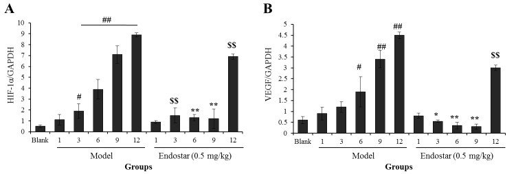Effects of Endostar on the mRNA levels of (A) HIF-1α and (B) VEGF in liver tissue of hepatoma 22-bearing C57BL/6 mice. All experiments were performed at least three times. Results are presented as the mean ± standard deviation (n=6). # P