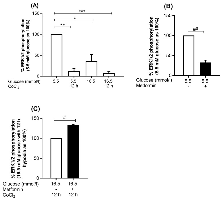 Effect of metformin on the activity of MAPK pathway. HUVEC were treated with euglycemia or hyperglycemia in the presence or absence of metformin for 48 h, and parallel cultures were exposed to CoCl 2 for 12 h. ( A ) Represents % of ERK1/2 phosphorylation ( B ) Effect of metformin on euglycemia, and ( C ) hyperglycemia combined with 12 h chemical hypoxia CoCl 2 . Percentage of phosphorylation indicates relative intensity of phospho-protein/total protein. The variation in protein expression levels was assessed by flow cytometry on three independent biological replicates. Results are presented as mean ± SEM and were analyzed using paired t -test. * p