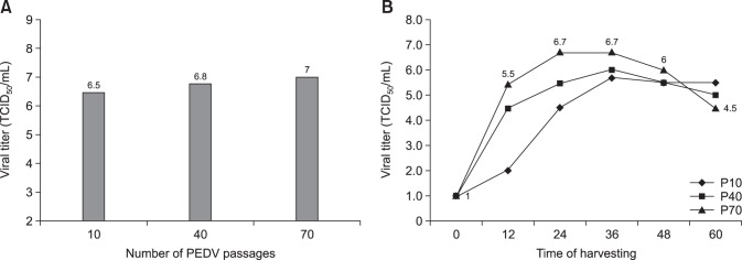 Virus titers according to number of the porcine epidemic diarrhea virus (PEDV) passages (A) and growth curves of the QIAP1401-P10, -P40, and -P70 strains according to time of harvesting in Vero cells (B). TCID, tissue culture infectious dose.