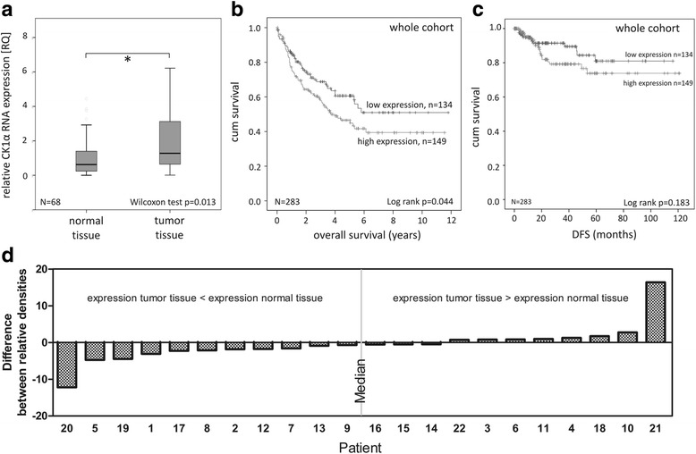 Investigation of CK1α RNA expression as a prognostic marker in CRC. a Box plot representing group comparison of relative CK1α RNA expression in normal and tumor tissue of CRC patients. b Kaplan-Meier plot displaying the overall survival of whole cohort, divided according to relative CK1α RNA expression in tumor tissue. * p