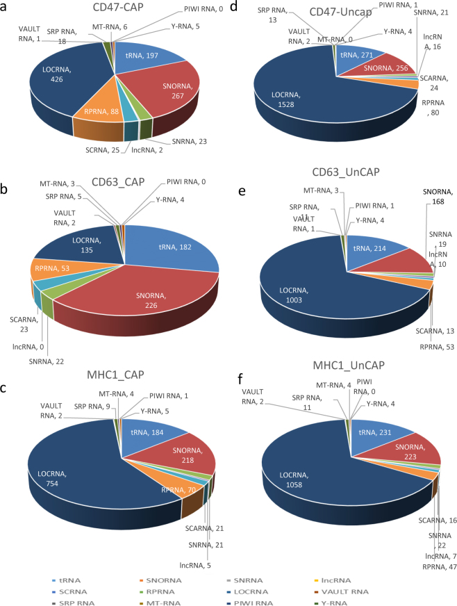 Noncoding RNA content of CD47 + , CD63 + and MHC1 + captured EVs versus the respective uncaptured EVs. ( a–c ) Individual classes of noncoding RNAs were extracted from linear total RPKM Gene Table by name and a table was generated for each type of RNA. The cutoff threshold 0.02 log2 total RPKM was used to filter RNAs isolated from CD47 + , CD63 + and MHC1 + EVs, and the numbers of mapped genes in each class are shown in pie charts. (d–f) Similarly, the number and type of non-coding RNAs identified in CD47 − , CD63 − and MHC1 − EVs and are shown as pie charts. Abbreviations: PIWI RNA, piwi-interacting RNA; Y-RNA, small non-coding RNA components of the Ro ribonucleoprotein particle; MT-RNA, mitochondrial RNA; SRP RNA, signal recognition particle RNA; Vault RNA RNA family of the vault ribonucleoprotein complex; SCA RNA, small Cajal body-specific RNA; SnRNA, small nuclear RNA; lncRNA, long non-coding RNA; SnoRNA, small nucleolar RNAs; RPRNA, ribosomal protein RNA; tRNA, transfer RNA; LOCRNA, nonannotated gene transcripts.