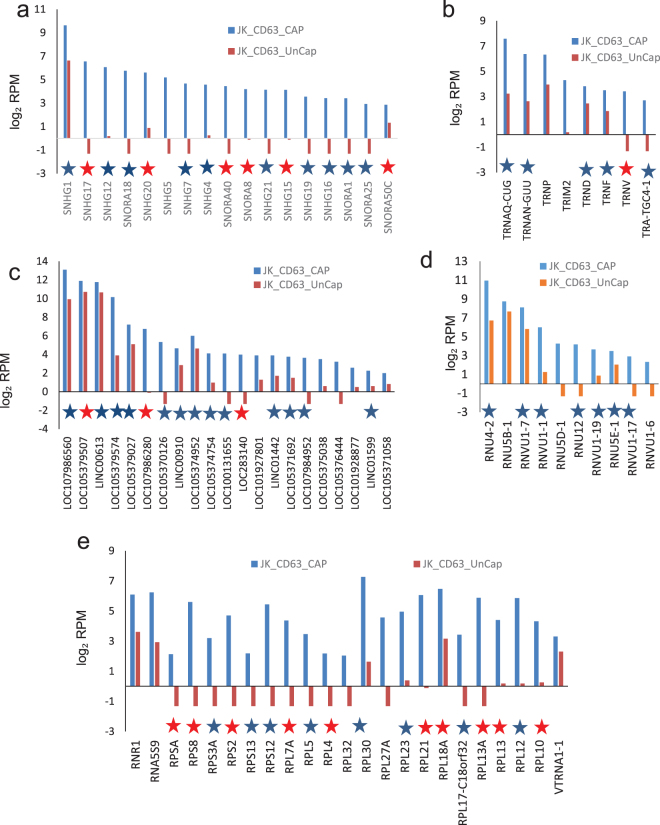 RNAs enriched in CD63 + EVs. Analysis of specific classes of RNAs in the 271 differentially expressed non-coding RNAs that were enriched ≥ 2-fold in CD63 + EVs versus CD63 - EVs were extracted from the scatter graph in Fig. 3b . A table was generated for each type of upregulated RNAs of captured CD63 + EVs. (a) Log 2 total RPM values are plotted for the indicated snoRNAs from CD63 + EVs (blue bars) and uncaptured CD63 - EVs. (b) Log 2 total RPM values are plotted for the indicated tRNAs from CD63 + EVs (blue bars) and uncaptured CD63 - EVs. (c) Log 2 total RPM values are plotted for the indicated lncRNAs from CD63 + EVs (blue bars) and uncaptured CD63 - EVs. (d) Log 2 total RPM values are plotted for the indicated small nuclear RNAs from CD63 + EVs (blue bars) and uncaptured CD63 - EVs. (e) Log 2 total RPM values are plotted for the indicated ribosomal protein RNAs from CD63 + EVs (blue bars) and uncaptured CD63 - EVs. Blue stars indicate RNAs that are also enriched in CD47 + or MHC1 + EVs. Red stars indicate RNAs enriched in all three types of captured EVs.