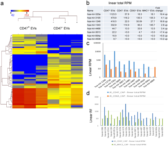 Micro-RNA enrichment in captured EVs determined by RNAseq. (a) Heat map of hierarchical clustering of 109 miRNAs (All species) differentially enriched in CD47 + versus CD47 − EVs at p