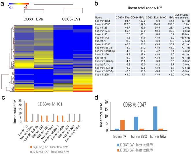 Differential enrichment of miRNAs in CD47 + , CD63 + and MHC1 + EVs. (a) Hierarchical clustering of 208 miRNAs (p