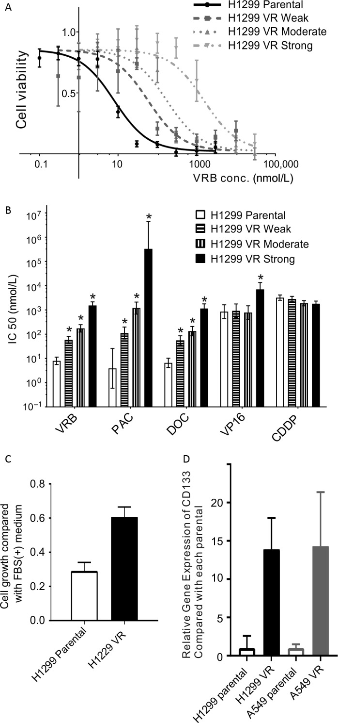 Characteristics of H1299 and A549  VR  cells. (A) H1299 parental and  VR  (weak, moderate, and strong resistant) cell viabilities in response to  VRB . H1299 parental and  VR  cells were treated for 96h with increasing concentrations of  VRB . Cell viability was determined using the  WST ‐8 assay and is shown as a percentage of the value of the untreated cells. The sigmoid curves were drawn using Prism software. Experiments were performed in triplicate. (B) The  IC 50 values for  VRB ,  PAC ,  DOC ,  VP ‐16, and  CDDP  in H1299 parental and  VR  cells. Cell viability in response to  PAC ,  DOC ,  VP ‐16, and  CDDP  was measured as described for  VRB . Experiments were performed in triplicate. The  IC 50 values were calculated using Prism software. The error bars show the 95%  CI . *  P