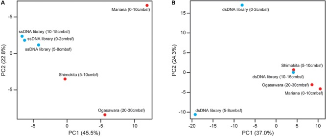 Principal component analysis (PCA) analysis of (A) ssDNA and (B) dsDNA viral sequence components in the relevant deep-sea sedimentary virome libraries from the off-Tohoku and other reference sites (Ogasawara Trench, Mariana Trench, and off Shimokita Peninsula) based on the taxonomic composition of viral communities. The respective off-Tohoku viral communities with the three different depths are shown in blue and the references are shown in red.