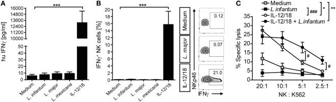 Coculture of peripheral blood mononuclear cells (PBMCs) with Leishmania neither induced natural killer (NK) cell interferon (IFN)-γ response nor NK cell cytotoxicity. Human PBMCs were cocultured with Leishmania spp. promastigotes (multiplicity of infection 10) and/or interleukin (IL)-12 and IL-18 (10 ng/ml each) for 20 h. IFN-γ production was determined by (A,B) ELISA of cell culture supernatants or (B) flow cytometry of intracellular IFN-γ in NKp46 + CD3 − NK cells. (C) NK cell cytotoxicity was determined by measurement of specific lysis of 51 Cr-labeled K562 tumor cells in a chromium-release assay. (A) Mean ± SEM of 76/71/55/46/74 donors for the five stimulations. (B) Mean ± SEM of 17/14/15/8/17 donors for the five stimulations; FACS plots show results of one representative donor. (C) Mean ± SEM of six (PBMC) or nine (PBMC + IL-12/18) donors. * ,# p