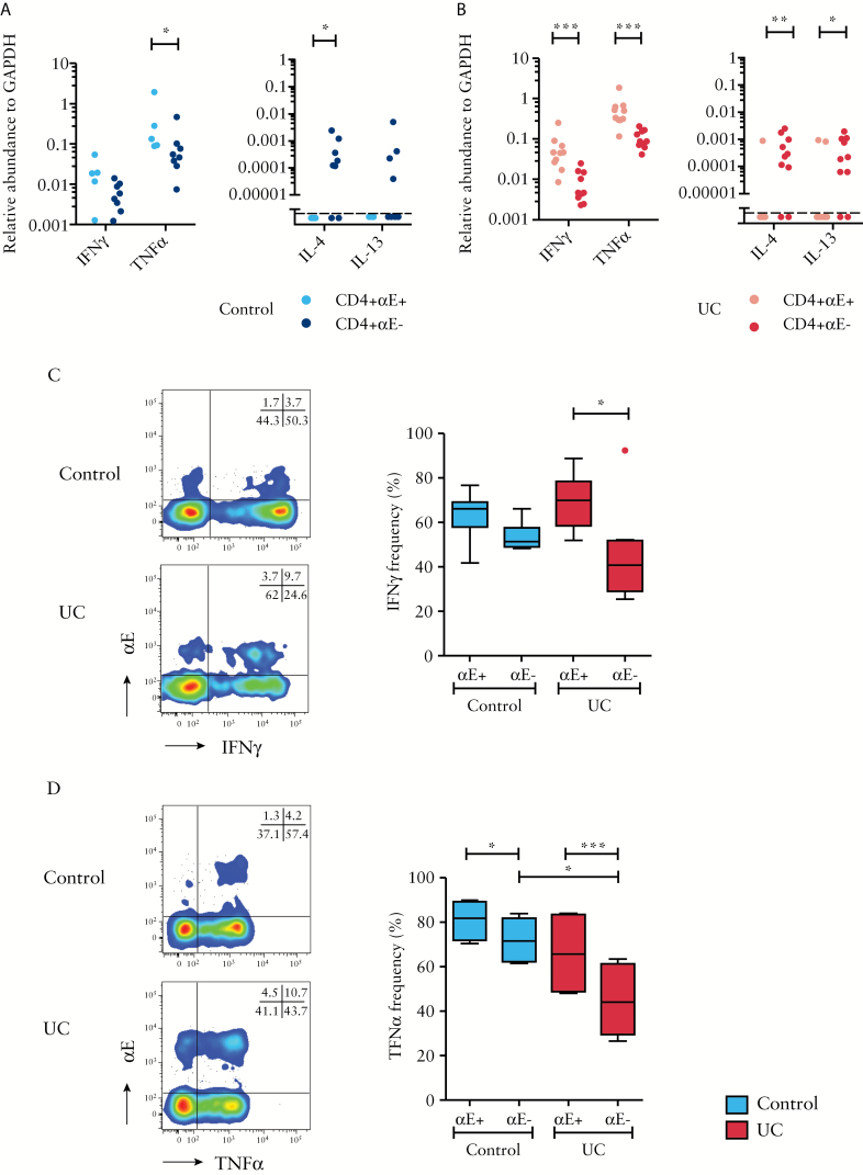 Colonic CD4+αE+ lymphocytes express higher levels of Th1 cytokines relative to CD4+αE− lymphocytes. FACS-sorted CD4+αE+ and CD4+αE− T lymphocytes from colonic biopsies harvested from [A] control subjects [ n = 8] and [B] patients with active UC [ n = 10] were evaluated for gene expression of IFNγ, TNFα, IL-4 and IL-13. In a separate study cohort, ex-vivo stimulated T cells were evaluated by flow cytometry for intracellular [C] IFNγ [ n = 6 control subjects and n = 8 patients with active UC], and [D] TNFα protein expression [ n = 4 control subjects and n = 6 patients with active UC]. Representative two-colour FACS plots from control and UC patients are shown alongside summary Tukey box plots.
