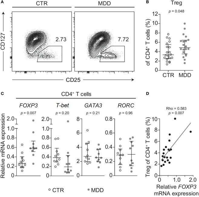Regulatory T cells in major depressive disorder (MDD) patients and non-depressed controls. (A) Regulatory T cells (Tregs) were identified by flow cytometric analysis of peripheral blood mononuclear cells from MDD patients and matched non-depressed controls (CTR). Displayed values are frequencies of Tregs expressed as a percentage of live CD4 + T cells from a representative case–control pair. (B) Differences in Treg frequency are depicted for the entire cohort ( n = 40). (C) Negatively selected CD4 + T cells from a subsample of patients and matched controls ( n = 20) were analyzed for mRNA expression of the T helper-associated transcription factors Forkhead box P3 ( FOXP3 ), T-box 21 ( T-bet ), GATA binding protein 3 ( GATA3 ), and RAR related orphan receptor C ( RORC ), respectively. Expression was normalized to the geometric mean expression of three housekeeping genes ( IPO8, TBP, RPL13A ). (D) The correlation between the expression levels of the gene FOXP3 in purified CD4 + T cells and the frequency of Tregs expressed as a percentage of CD4 + T cells is plotted ( n = 20). Graphs depict medians with interquartile ranges. For all comparisons, the Wilcoxon signed-rank test was used.