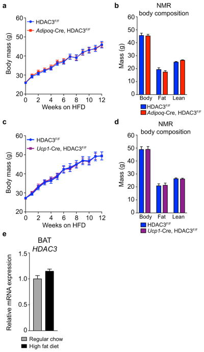 Effect of high fat diet on Adiponectin -Cre and Ucp1 -Cre HDAC3 KO mouse models 12-week old weight-matched HDAC3 KO and control littermates were fed high-fat diet (HFD) for 12 weeks ( a ) Weekly body weights, (n= 8 Adipoq -Cre, n= 10 control), ( b ) Body composition analysis by NMR, (n= 8 Adipoq -Cre, n= 10 control), ( c ) Weekly body weights, (n= 7 Ucp1 -Cre, n= 7 control), ( d ) Body composition analysis by NMR, (n= 7 Ucp1 -Cre, n= 7 control). (e) RT-qPCR of BAT HDAC3 mRNA expression following 12 weeks HFD versus regular chow fed controls (n= 7, 5, respectively). Data are represented as mean ± s.e.m.