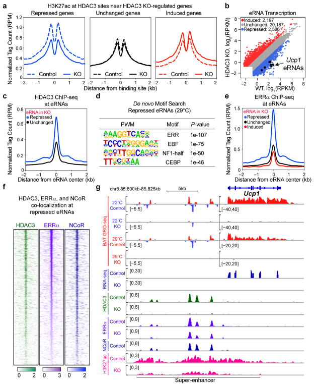 HDAC3 functions as an ERRα coactivator in BAT (a) Average H3K27ac ChIP-seq profiles of Adipoq- Cre HDAC3 KO mice versus control littermates (n= 3, 3; pooled biological replicates/library) at enhancers bound by HDAC3 within 100 kb of transcription start sites of HDAC3 KO-regulated genes by GRO-seq (fold-change > 1.5 or