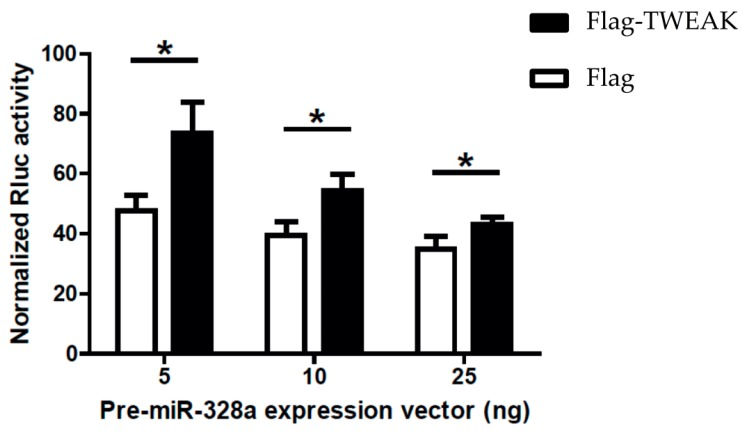 TWEAK impairs microRNA-guided RNA silencing of a reporter gene induced by a pre-microRNA. HEK 293 cells expressing Flag-TWEAK (or transfected with an empty pcDNA3.1-Flag vector; Flag) were transfected with the silencing inducer pre-miR-328a (or a negative pre-microRNA control targeting a deleted region in Rluc ; shNEG), and a Rluc reporter gene [ 16 ] coupled with three copies of a natural miR-328a binding site in the 3′ untranslated region (UTR) of the Rluc reporter gene. Cells were harvested 18 h later for the successive measurements of Rluc and Fluc activities ( n = 3 experiments, in duplicate). * p