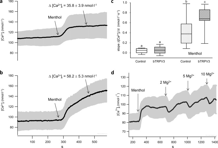 Effects of menthol and Mg 2+  on intracellular calcium [Ca 2+ ] i . a) Average of ten original recordings of control HEK-293 cells, showing a significant increase of Δ [Ca 2+ ] i  in the 200 s interval after application of menthol (1 mmol∙l −1 ) (95% confidence interval in grey), with the timeline identical to that in b), showing the average [Ca 2+ ] i  (± 95%) of eleven recordings of HEK-293 cells overexpressing bTRPV3. While resting levels of [Ca 2+ ] i  in bTRPV3 cells were not significantly different from those of control cells, menthol led to a significantly higher Δ [Ca 2+ ] i  in these cells (p = 0.003). c) Boxplots comparing the slopes (Δ [Ca 2+ ] i  /Δ t) of the graphs in (a and b) in a 50 s interval at the beginning of the measurement and in the 50 s interval after application of menthol (differing letters above the boxes indicate p