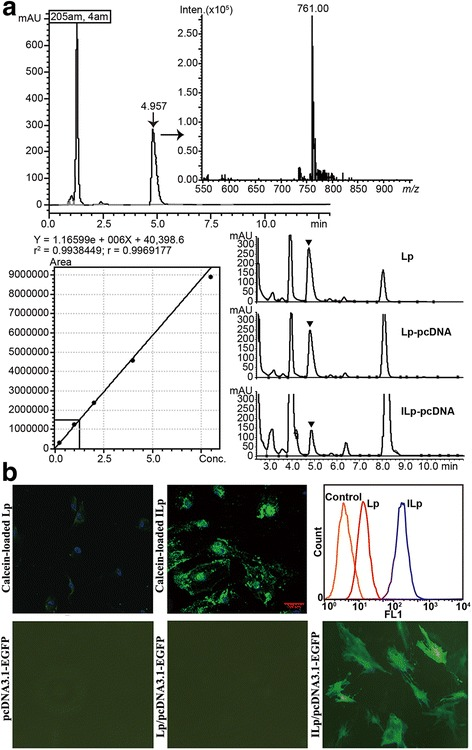 Characterization of liposomes. a Rapid screening and quantitative analysis of 1-palmitoyl, 2-oleoyl phosphatidylcholine (POPC) in Lp by UHPLC-MS-MS. POPC had a maximum absorption peak at 205 nm, with m/z 761. A stock solution of POPC was prepared in chloroform, to a final concentration of 8 mg/mL. Working standards were prepared by serial dilution of stock solutions. Lp POPC was dried in a desiccator and extracted with 100% methanol. Chromatographic separations were carried out using a Shimadzu <t>LCMS-8050</t> triple quadrupole mass spectrometer equipped with a Shimadzu Nexera X2 UHPLC system. In vitro cellular association and in vivo toxicity of Lp with or without pcDNA loading. b Confocal fluorescence images showing uptake of calcein-loaded Lp or ILp by primary tumor-derived microvascular endothelial cells (TECs; DAPI/nuclei, blue; calcein, green). Flow cytometry histograms of cellular fluorescence uptake. Negative control binding experiments were performed using isotype-matched controls or undecorated Lp. Total of 10,000 events based on the front scatter (FSS) and side scatter (SSC) gate were analyzed and displayed by colored histograms. Orange line, control; red line, Lp; blue line, ILp. Fluorescence micrographs of TECs transfected with pcDNA3.1-EGFP, Lp/pcDNA3.1-EGFP, and ILp/pcDNA3.1-EGFP