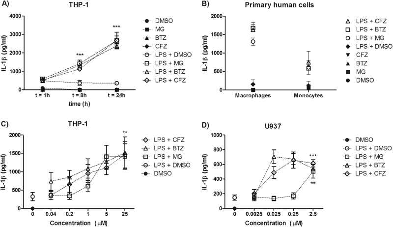 Proteasome inhibitors induce IL-1β secretion. a THP-1 cells were pre-treated with LPS (10 ng/ml) for 2 h prior to exposure to 5 μM of proteasome inhibitors (MG-132, bortezomib and carfilzomib). Supernatants were collected 1, 8 and 24 h after proteasome inhibition and assayed for IL-1β secretion. b Peripheral blood-derived human macrophages and monocytes were stimulated as in a and assayed for IL-1β secretion after 24 h. c THP-1 and d U937 cells were pre-treated with 10 ng/ml LPS for 2 h prior to proteasome inhibitor treatment. Supernatants were collected and assayed for IL-1β levels after 24 h. n = 3 for all experiments (independent experiments for cell lines, individuals for primary cells). Data were analysed using two-way ANOVA and the Bonferroni post-test. ** and *** indicate P
