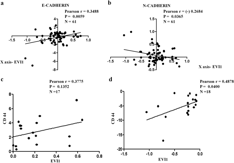 EVI1 expression correlates with E-CADHERIN, N-CADHERIN, and CD44 expression in colon cancer patient samples a A positive correlation between the levels of expression of EVI1 and E-CADHERIN was observed for stage IV samples ( n = 61). b A negative correlation between the levels of expression of EVI1 and N-CADHERIN was observed for stage IV samples ( n = 61). c A positive correlation between the levels of expression of EVI1 and CD44 was observed for stage IV samples that showed both EVI1 + /CD44 + samples ( n = 17). d A positive correlation between the levels of expression of EVI1 and CD44 was observed for stage IV samples that showed both EVI1 − /CD44 − samples ( n = 18).