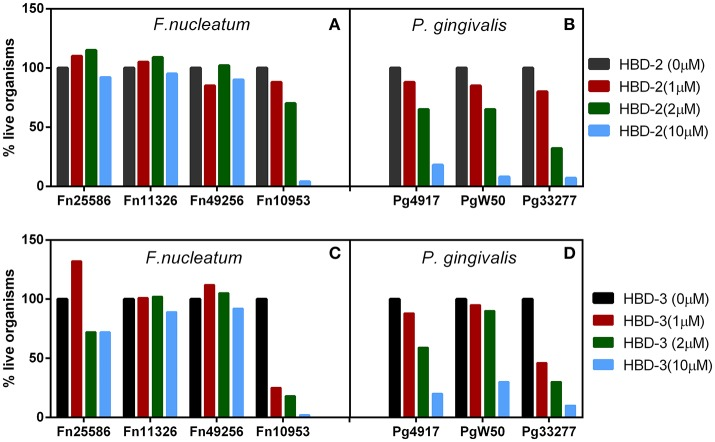 (A–D) Representative F. nucleatum (A,C) and P. gingivalis (B,D) susceptibility to hBD-2 (A,B) and−3 (C,D) , 2 × 10 5 bacteria were incubated with recombinant hBD-2 and 3 (indicated micro-molar concentrations) anaerobically, for 3 h, followed by serial dilutions and plating on sheep red blood agar plates.