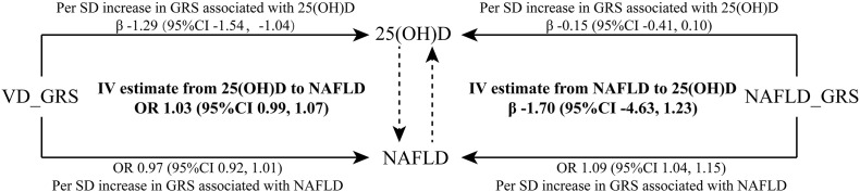 Bidirectional instrumental variable (IV) estimated association between 25(OH)D and NAFLD by weighted GRSs. Data were presented as regression coefficient (β) or odds ratio (OR) and 95% confidence interval (CI). In this MR framework, the instrumental variable estimators are OR IV(VD-NAFLD) = exp (ln (OR VD_GRS-NAFLD )/β VD_GRS-25(OH)D ) and β IV(NAFLD-VD) = β NAFLD_GRS-25(OH)D /ln (OR NAFLD_GRS-NAFLD ). Data were adjusted for age, sex, BMI, current smoking, hypertension, diabetes, HDL-cholesterol, LDL-cholesterol and triglycerides. 25(OH)D, 25-hydroxyvitamin D; VD_GRS, vitamin D genetic risk score; NAFLD_GRS, nonalcoholic fatty liver disease genetic risk score; SD, standard deviation.