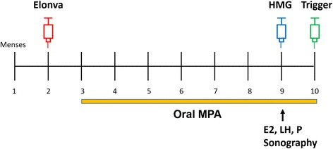 Treatment protocol of ovarian stimulation. On the menstrual cycle day 2, 3 or 4, ovarian stimulation was started with a single injection of corifollitropin alfa (Elonva®; MSD), of which the dosage was determined by the patient's body weight (150 μg for > 60 kg and 100 μg for ≦ 60 kg). <t>Medroxyprogesterone</t> acetate <t>(MPA)</t> (Provera® 5 mg/tablet; Pfizer) 5 mg twice a day was initiated orally from the day after Elonva injection. Seven days after Elonva injection, follicle development was monitored by transvaginal sonography as well as serum hormone levels of E2, LH and P. The patients received trigger at night if at least three leading follicles reached above 17 mm in diameter, and the final tablet of MPA was taken in the morning of the trigger day. If the folliculogenesis was insufficient for trigger, additional HMG (Menopur®, Ferring) 150 ~ 225 IU/day would be administered for days until the requirement for trigger was met