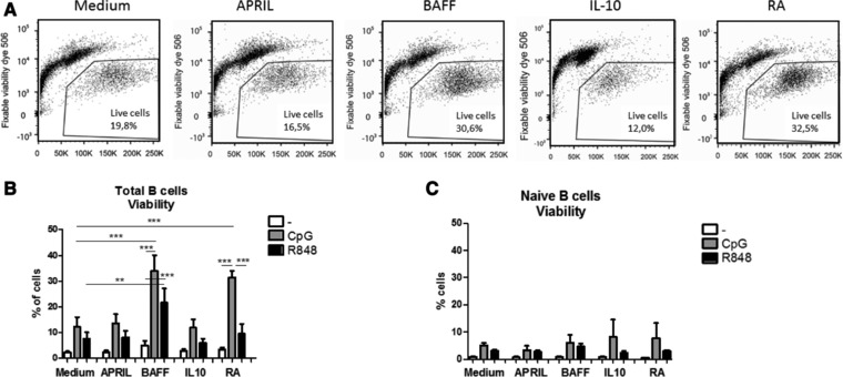 BAFF and retinoic acid differentially affect viability of stimulated mature B cells, (A) Representative flow cytometry plots for viability staining (CpG‐ODN), (B) Percentages of viable B cells (6 days of culture of total peripheral blood B cells) after stimulation with CpG‐ODN or R848 in combination with T cell independent B cell class switch inducing factors (mean +SEM, n = 5 donors per group, combined graph of three separate experiments, Repeated measures ANOVA, Tukey post‐hoc test, * p